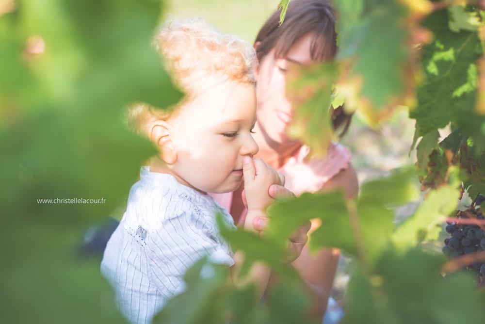Séance d'automne dans les vignes | Lucas