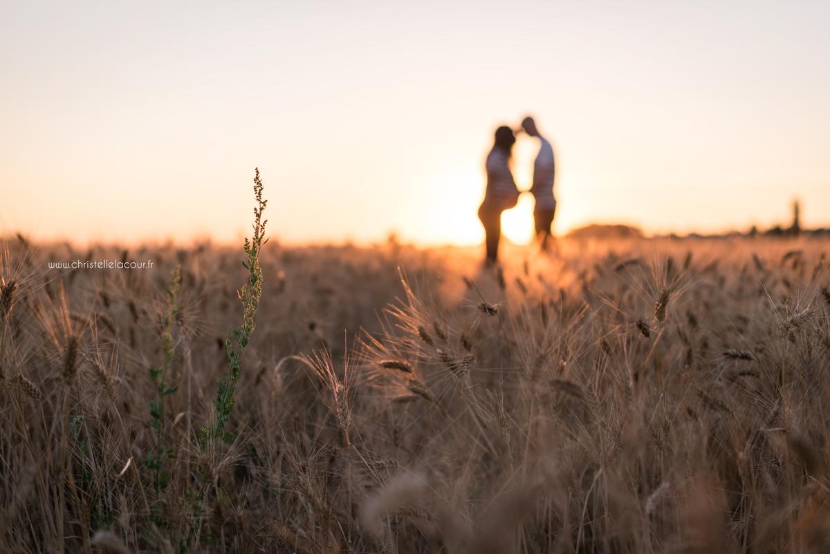 Séance photo de grossesse près de Toulouse au coucher de soleil dans un champ de blé