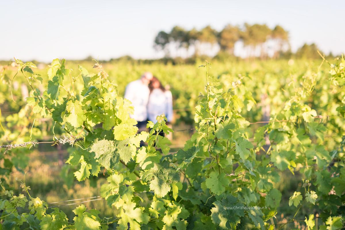 Séance grossesse dans les vignes près de Toulouse, lumière dorée sur les feuilles de vignes de Fronton